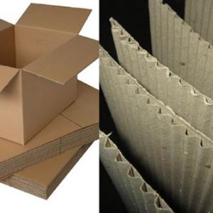 carton-3